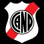 N Potosí logo