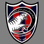 Nassaji logo