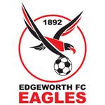 Edgeworth Eagles FC logo