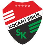 Körfez logo