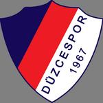 Düzcespor logo