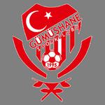 Gümüşhane logo