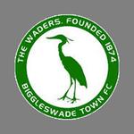 Biggleswade logo