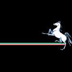 Marconi Stallions FC logo