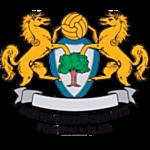 North Greenford United FC logo