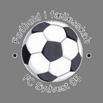 Sydvest logo