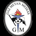 Gaz Metan logo