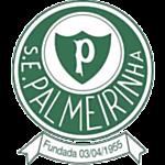 Palmeirinha logo