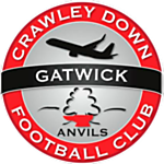Crawley Down Gatwick FC logo