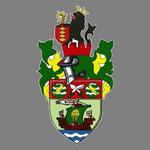 Runcorn Linnets FC logo