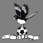 Dereham Town FC logo