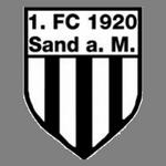 Sand logo