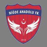 Niğde Anadolu logo