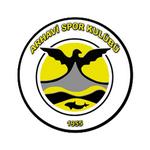 Arhavispor logo