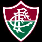 Fluminense FC Under 20 logo
