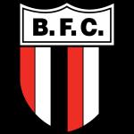 Botafogo Futebol Clube Ribeirão Preto Under 20 logo