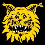Tampereen Ilves logo