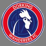 Dorking W logo
