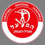 H Migdal logo