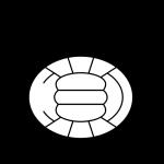 Bocholter VV logo
