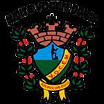VOCEM logo