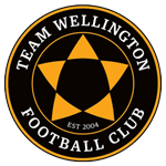 Team Wellington logo
