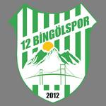 12 Bingöl Spor logo