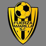 F. Amarilla logo
