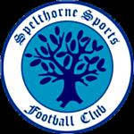 Spelthorne Sports FC logo