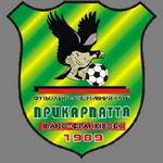 Teplovyk logo