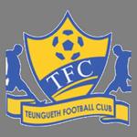 Teungueth logo