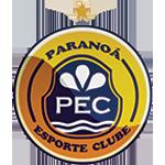 Paranoá Esporte Clube Under 20 logo