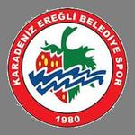 Karadeniz Ereğli BSK logo