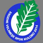 Velimeşespor logo