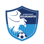 BB Erzurumspor logo