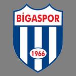 Bigaspor logo