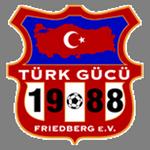 Türk Friedberg logo