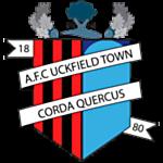 Uckfield Town logo