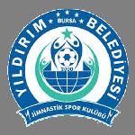 Bursa Yıldırımspor logo