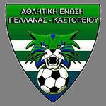 Pellana logo