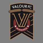 Valour logo