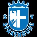 SV Spakenburg logo