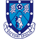 Rugby Town FC logo