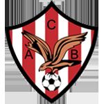CA Bembibre logo