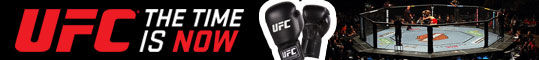 UFC MMA banner