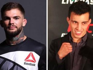 Análise: Tarec Saffiedine vs Rick Story (UFC - 29 maio 2016)