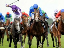 Horse racing betting In-Play: get an advantage