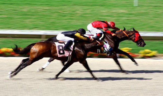 Argentina may release Palermo Racecourse