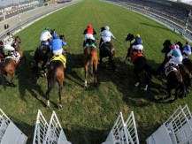 Apuestas en vivo en carreras de caballos: cómo obtener ventaja