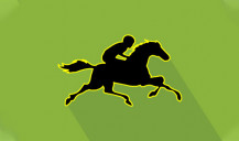 Horse bets - we're on the track! High performance in 5 furlong
